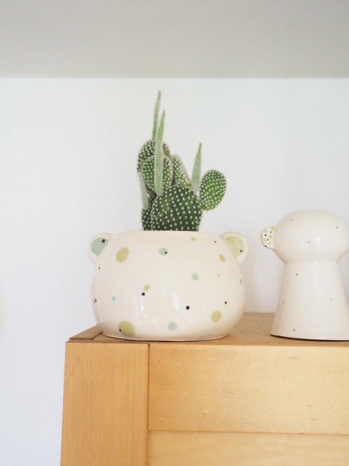pot-cactus
