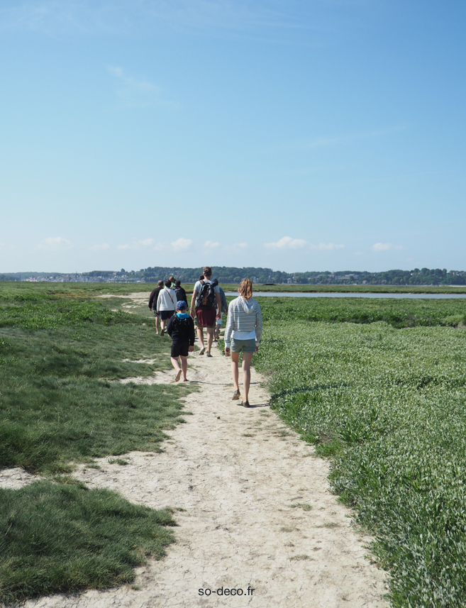 traversee-baie-de-somme