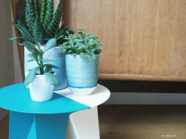 banc-plantes
