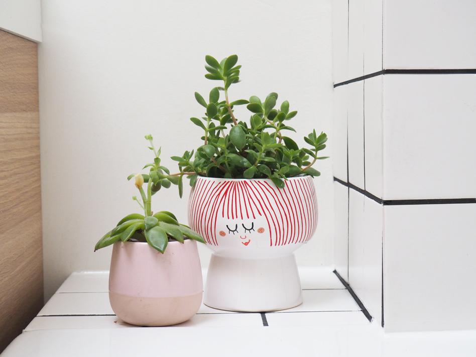 pot-plante-tigger